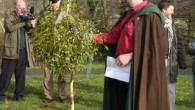 This is a relatively new festival founded in 2004 celebrating Tenbury Wells' long association with Mistletoe growing and trading and there's a full programme of events, music and theatre connected […]