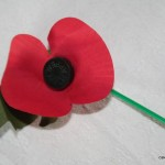 Wear your Poppy with Pride