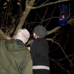 Toast in the trees at Community Orchard