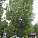 The Arbor Tree