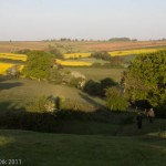 West Field Laxton pre dawn chorus walk May Day 2011_