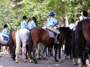 horseman's sunday