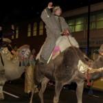 Camel Parade 2015