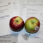 Apples & Order of Service